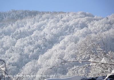 雪の奥飛騨